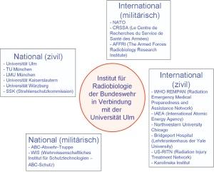 латинский язык учебная программа для